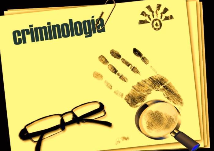 Imagen de Criminología