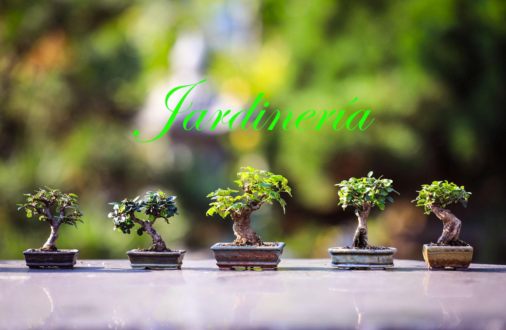 curso de jardineria